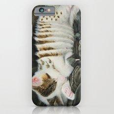 Sleeping Accordion iPhone 6s Slim Case