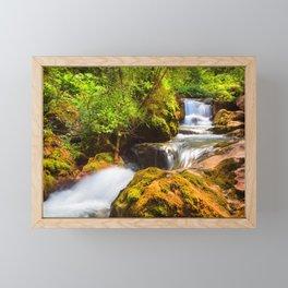 Swiss rapids. Framed Mini Art Print