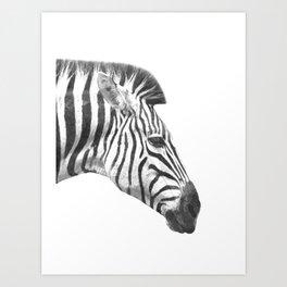 Black and White Zebra Profile Art Print