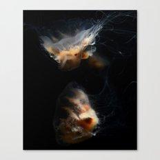 Cream Jellyfish Canvas Print