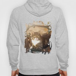 Cute cat relaxing in the sun on old bench Hoody