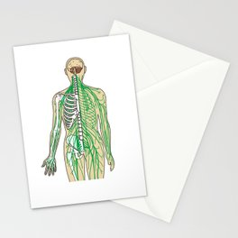 Human neural pathways Stationery Cards