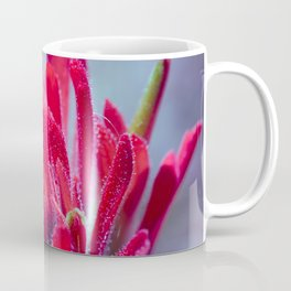 Indian Paintbrush Groovy Wildflower Coffee Mug