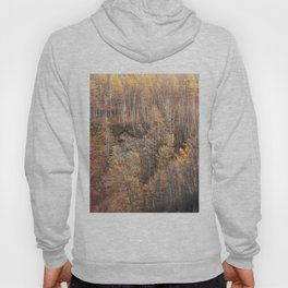 The autumn color Hoody