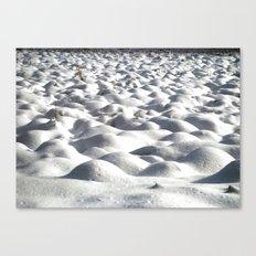 Snoww Canvas Print