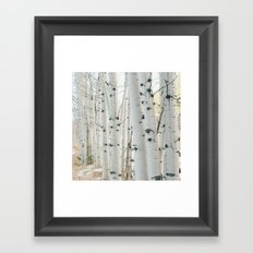 Aspen II Framed Art Print