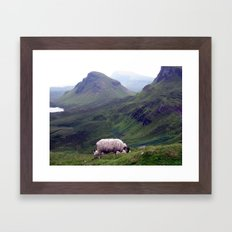 scottish sheeps, isle of skye. Framed Art Print