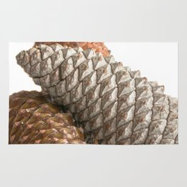 Pinecones Rug