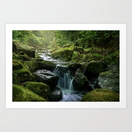 Flowing Creek, Green Mossy Rocks, Forest Nature Photography Art Print