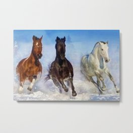 Woodstock, Connecticut - The Wild of the Winter Horses, A Portrait Metal Print