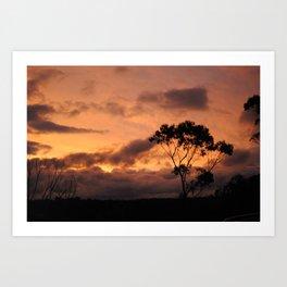 Blue Mountains, Australia Art Print