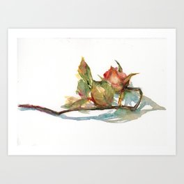 DAILY ROSE PAINTING DAY1412 20190620THU Art Print