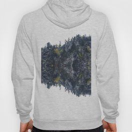 Mirrored landscape 4 pyrenees Hoody