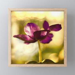 Glowing Purple Flower #decor #buyart #society6 Framed Mini Art Print