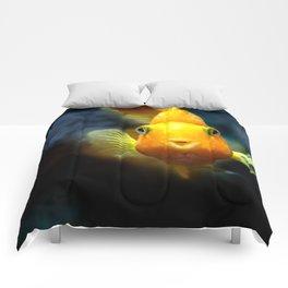 Funny goldgish Comforters