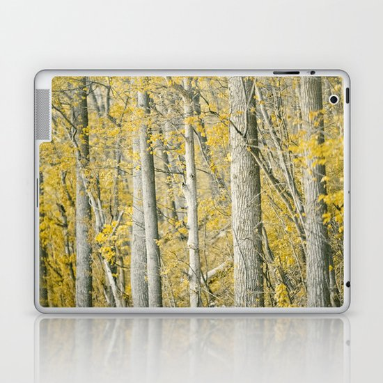 Amber Forest Laptop & iPad Skin