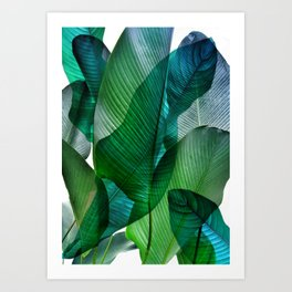 Palm leaf jungle Bali banana palm frond greens Art Print