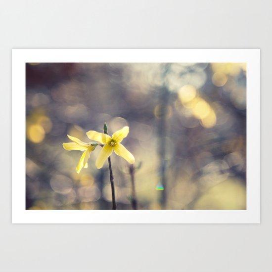Garden: end of winter Art Print