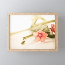 Beautiful origanum flower - Floral Photography #Society6 Framed Mini Art Print
