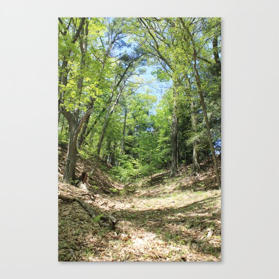 Towering forest Canvas Print