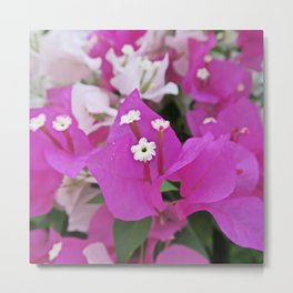 festive pink white flowers asian beautiful bouquet Metal Print
