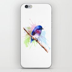Small bird iPhone & iPod Skin