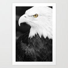 Bald Eagle with Yellow Eye Art Print