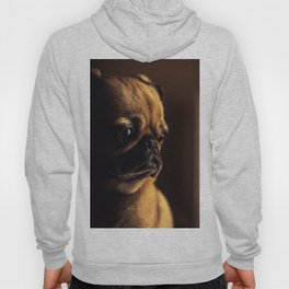 Cute Pug Dog Hoody