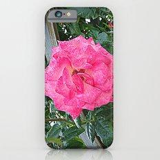 rosa rosa Slim Case iPhone 6s