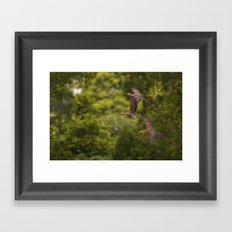 Flight of the lesser-whistling ducks Framed Art Print