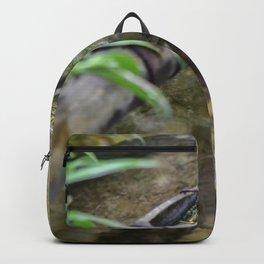 Garden Song Backpack