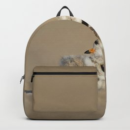 GRAY AND BLACK BIRDS ON BROWN SAND Backpack