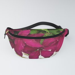 Rouge Cardinal Clematis Fanny Pack
