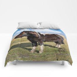 Dartmoor Pony Comforters