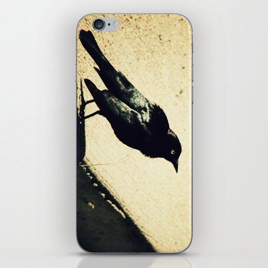 Little Blackbird iPhone & iPod Skin