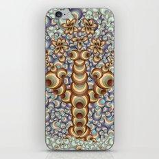 Eternal Spherolgy iPhone & iPod Skin