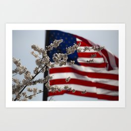 Flowers with American Flag Art Print