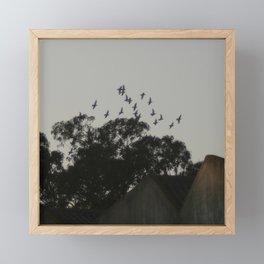 Nightfall flight Framed Mini Art Print