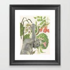 117.  Framed Art Print