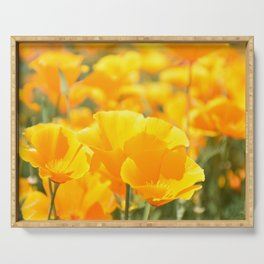 Yellow Poppies Serving Tray