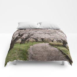 Row of cherry blossom trees Comforters