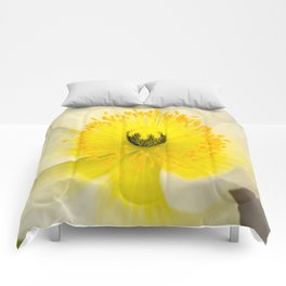Yellow Anemone Comforters