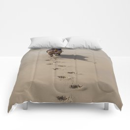 On a mission Comforters
