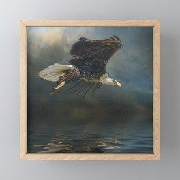 Bald Eagle Fishing Framed Mini Art Print