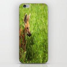 Peeking Out iPhone & iPod Skin