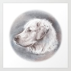 Golden Retriever Dog Drawing Art Print