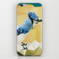 Arctic Bird! iPhone & iPod Skin