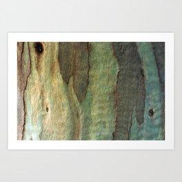 Eucalyptus Tree Bark 6 Art Print