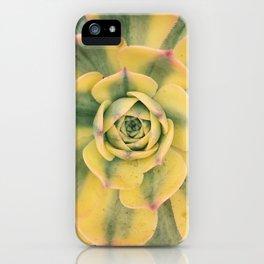 l.a. iPhone Case