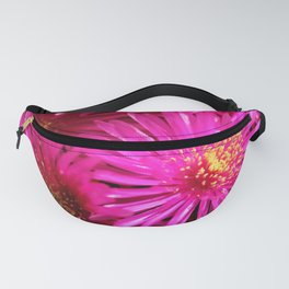 Ice Plant Pink Cactus Flowers Fanny Pack